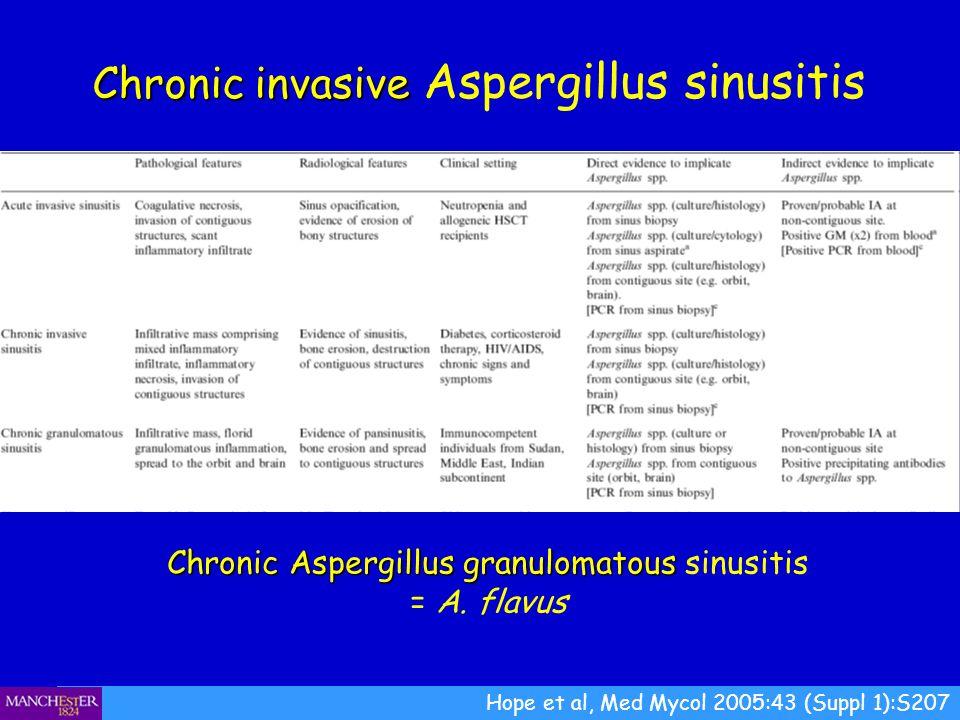 Hope et al, Med Mycol 2005:43 (Suppl 1):S207 Chronic invasive Chronic invasive Aspergillus sinusitis Chronic Aspergillus granulomatous Chronic Aspergi