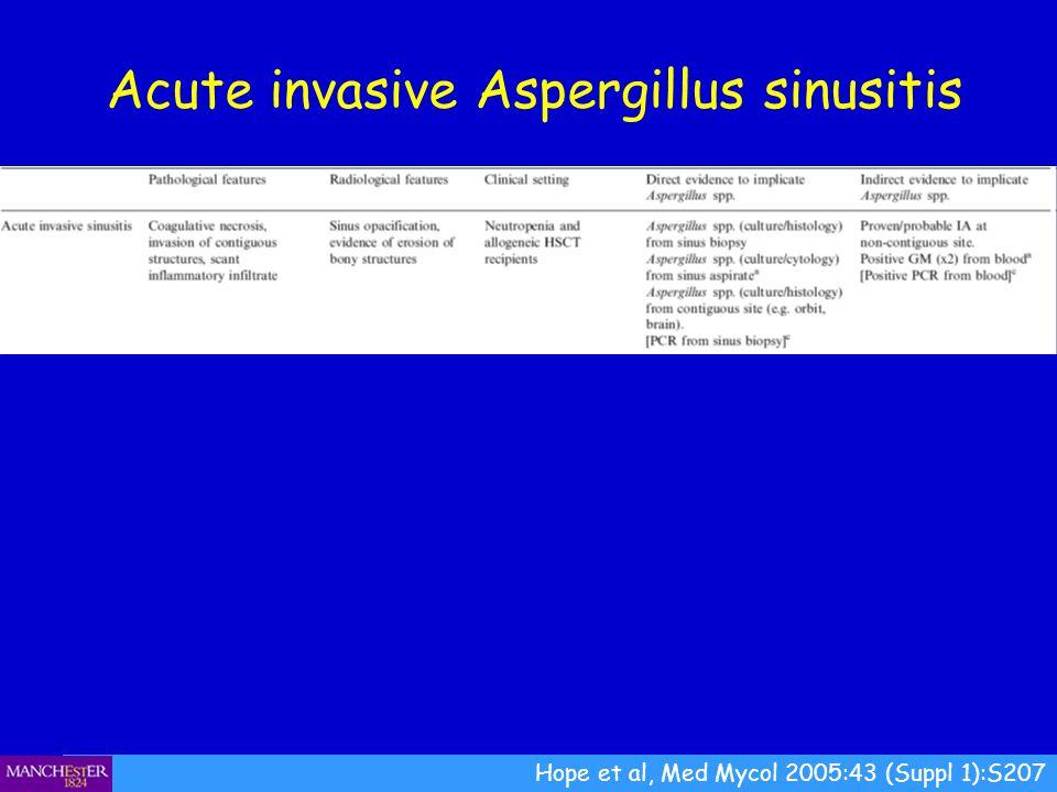Hope et al, Med Mycol 2005:43 (Suppl 1):S207 Acute invasive Aspergillus sinusitis