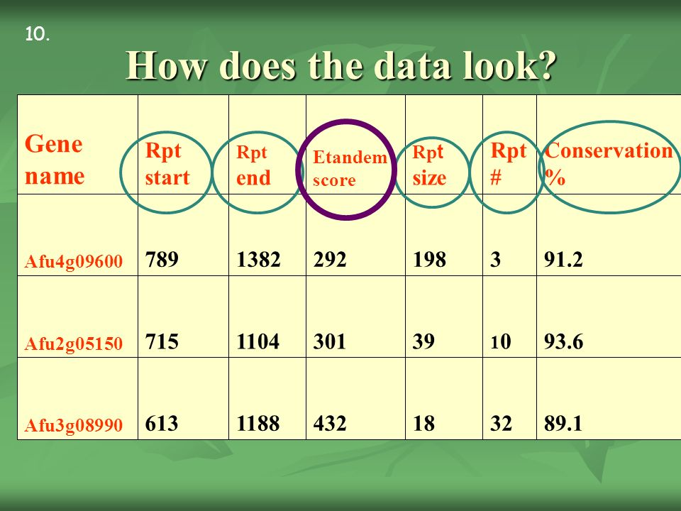 How does the data look? 89.132184321188613 Afu3g08990 93.6 1010393011104715 Afu2g05150 91.231982921382789 Afu4g09600 Conservation % Rpt # Rp t size Et