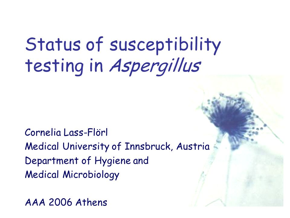 Status of susceptibility testing in Aspergillus Cornelia Lass-Flörl Medical University of Innsbruck, Austria Department of Hygiene and Medical Microbiology AAA 2006 Athens