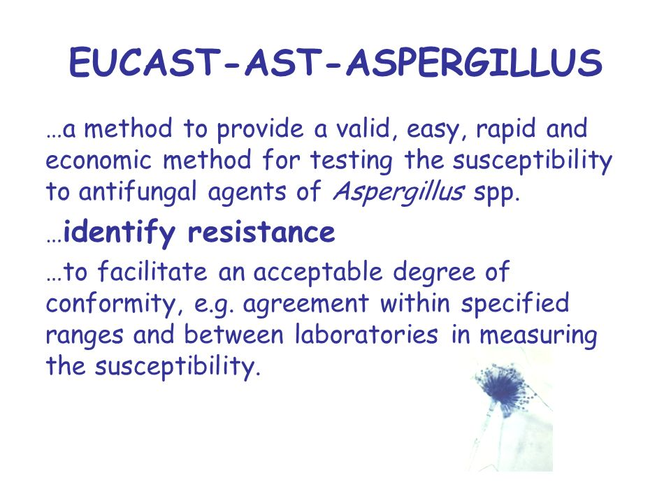 EUCAST-AST-ASPERGILLUS …a method to provide a valid, easy, rapid and economic method for testing the susceptibility to antifungal agents of Aspergillus spp.
