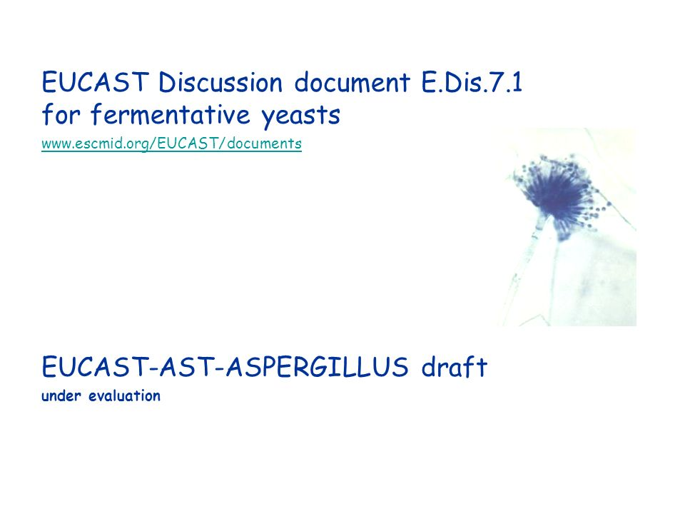 EUCAST Discussion document E.Dis.7.1 for fermentative yeasts www.escmid.org/EUCAST/documents EUCAST-AST-ASPERGILLUS draft under evaluation