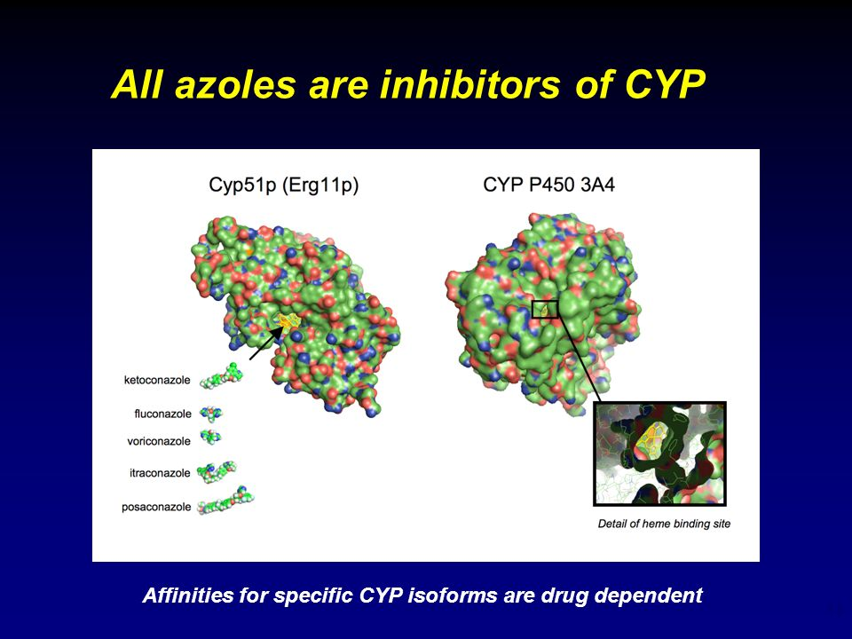 11 All azoles are inhibitors of CYP Affinities for specific CYP isoforms are drug dependent