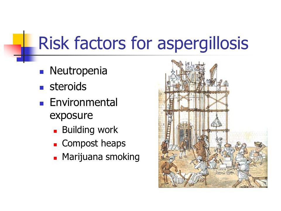 Risk factors for aspergillosis Neutropenia steroids Environmental exposure Building work Compost heaps Marijuana smoking