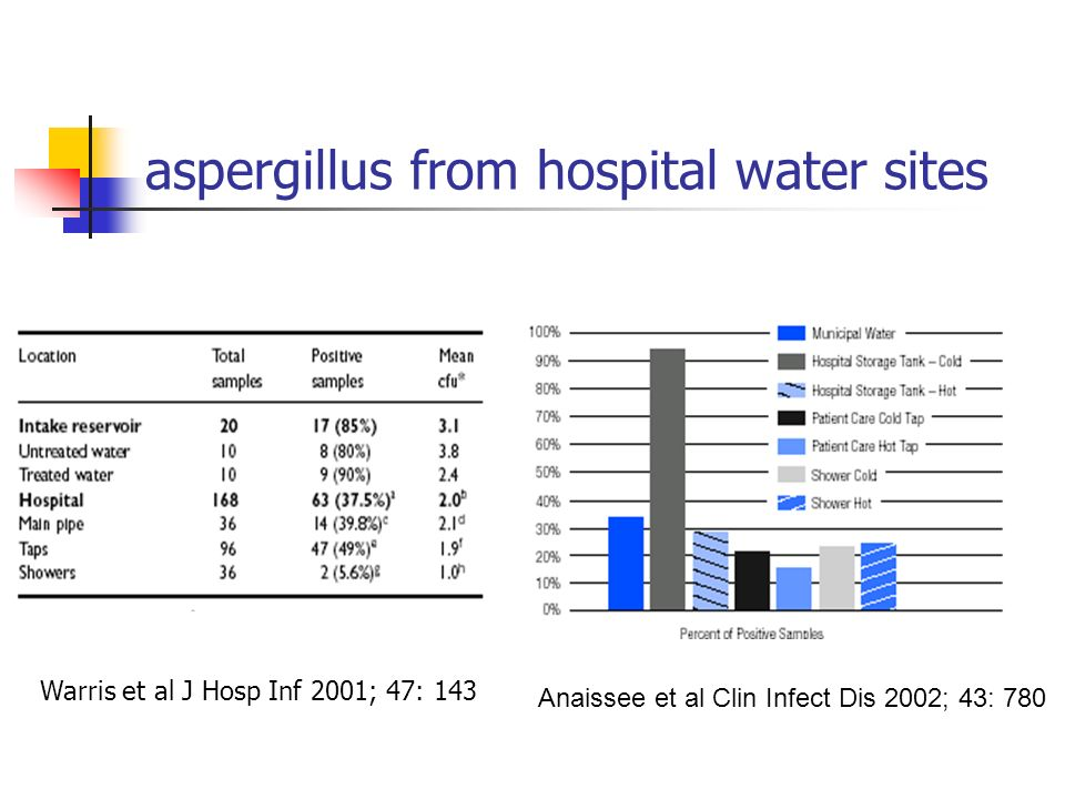 aspergillus from hospital water sites Anaissee et al Clin Infect Dis 2002; 43: 780 Warris et al J Hosp Inf 2001; 47: 143