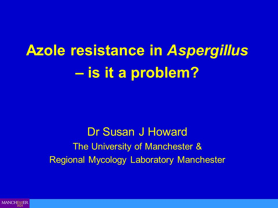 Azole resistance in Aspergillus – is it a problem? Dr Susan J Howard The University of Manchester & Regional Mycology Laboratory Manchester