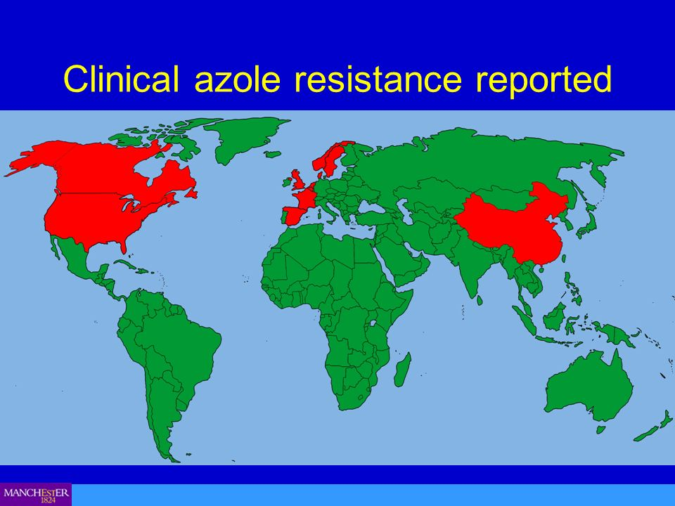 Clinical azole resistance reported