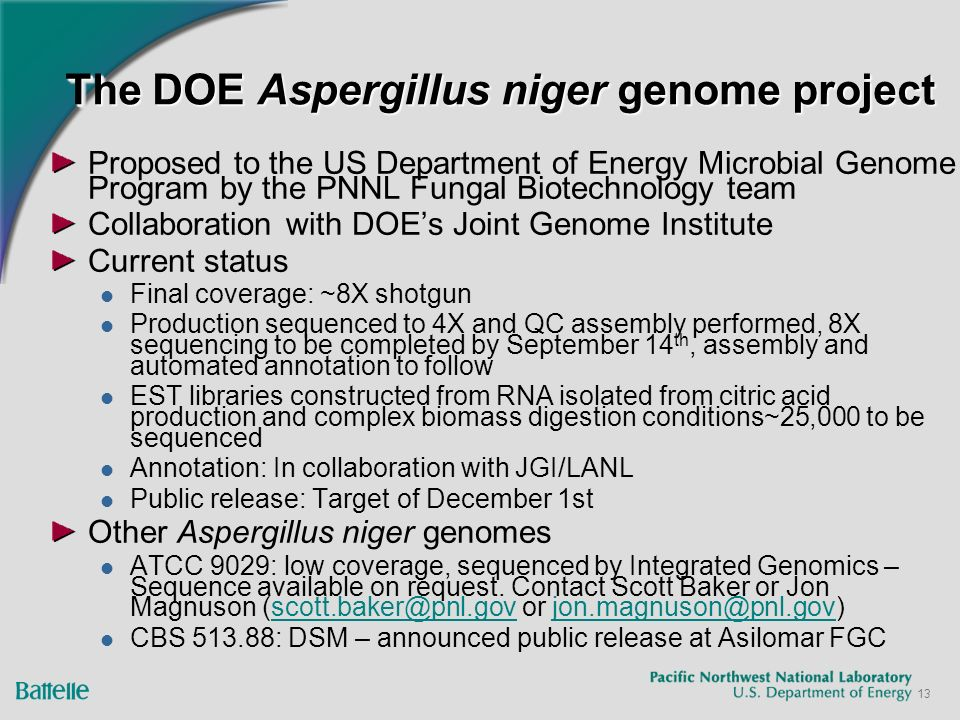 13 The DOE Aspergillus niger genome project Proposed to the US Department of Energy Microbial Genome Program by the PNNL Fungal Biotechnology team Collaboration with DOEs Joint Genome Institute Current status Final coverage: ~8X shotgun Production sequenced to 4X and QC assembly performed, 8X sequencing to be completed by September 14 th, assembly and automated annotation to follow EST libraries constructed from RNA isolated from citric acid production and complex biomass digestion conditions~25,000 to be sequenced Annotation: In collaboration with JGI/LANL Public release: Target of December 1st Other Aspergillus niger genomes ATCC 9029: low coverage, sequenced by Integrated Genomics – Sequence available on request.