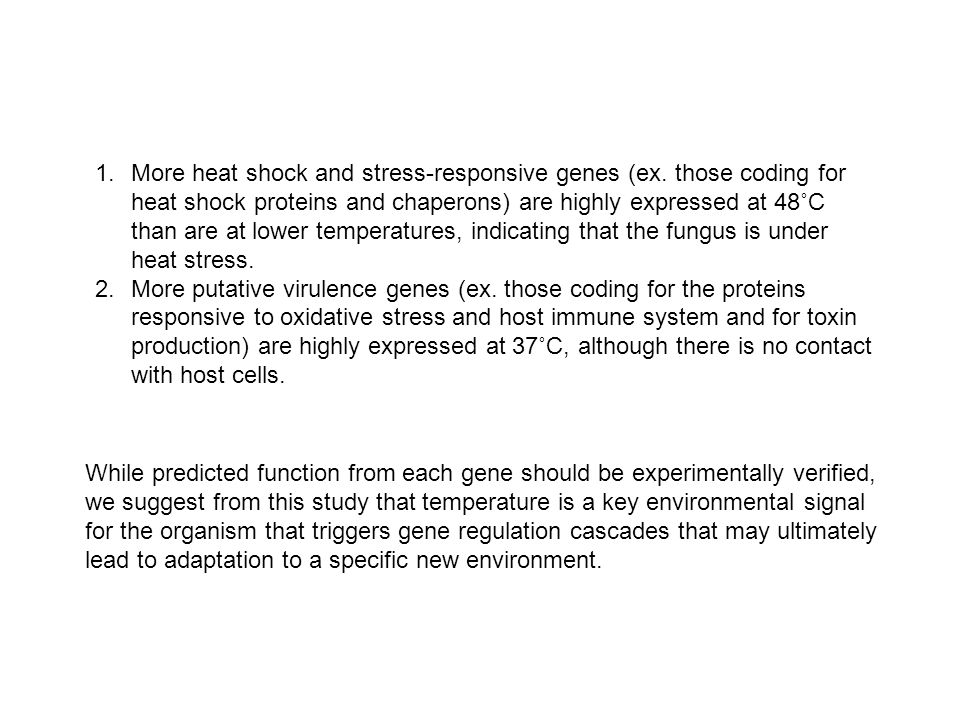 1.More heat shock and stress-responsive genes (ex.