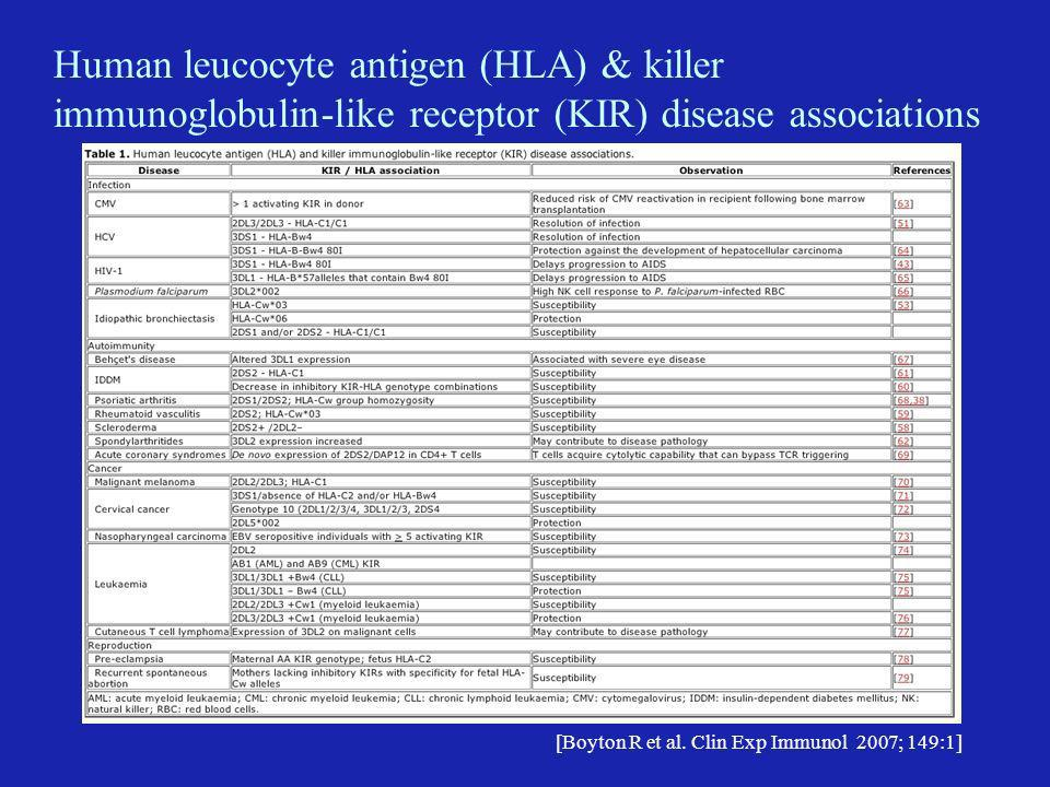 Genetic studies implicate altered regulation of natural killer (NK) cells in idiopathic bronchiectasis HLA-Cw*03 and HLA-C group 1 homozygosity associated with idiopathic bronchiectasis Analysis of relationship between HLA-C and KIR genes suggest a shift to activated NK cell activity [Boyton et al Am J Respir Crit Care Med 2006; 173: 327]