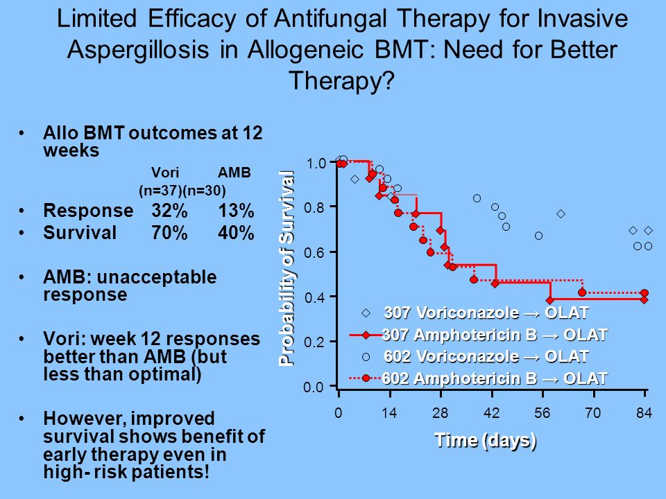 Limited Efficacy of Antifungal Therapy for Invasive Aspergillosis in Allogeneic BMT: Need for Better Therapy? Allo BMT outcomes at 12 weeks Vori AMB (