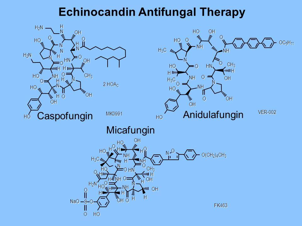 Echinocandin Antifungal Therapy Caspofungin Anidulafungin H2NH2NH2NH2N H N OH O H N O OH CH 3 HN H O O O OH O N N N H2NH2NH2NH2N HO O NH HN N H H HO H