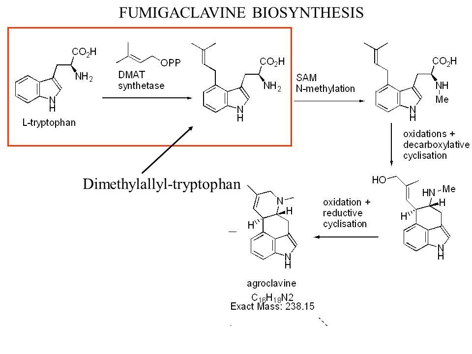FUMIGACLAVINE BIOSYNTHESIS Dimethylallyl-tryptophan