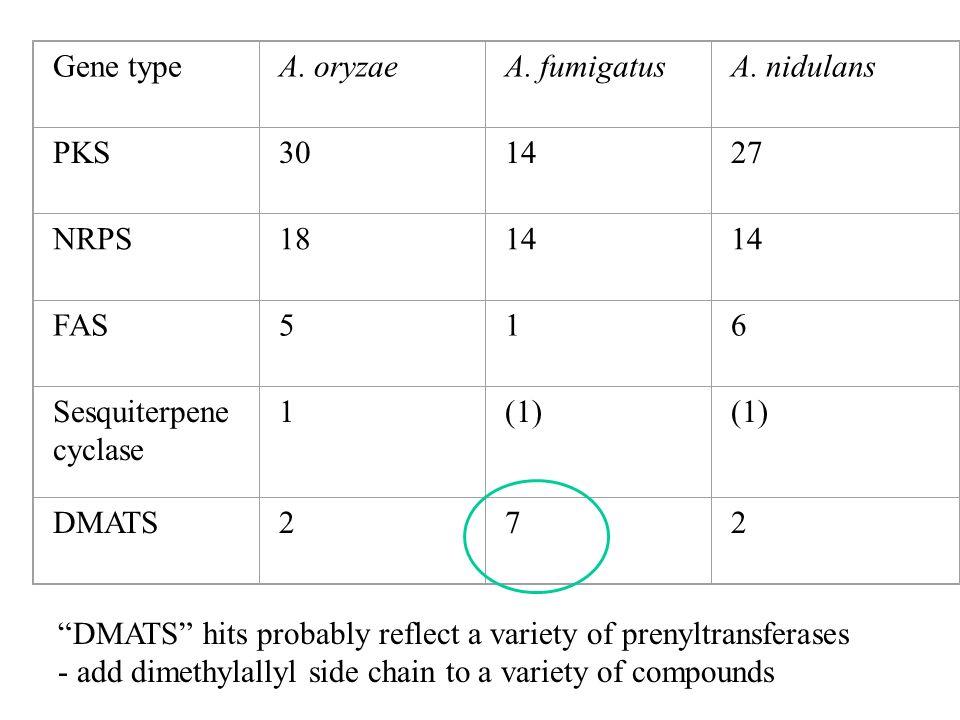 Gene typeA. oryzaeA. fumigatusA. nidulans PKS301427 NRPS1814 FAS516 Sesquiterpene cyclase 1(1) DMATS272 DMATS hits probably reflect a variety of preny