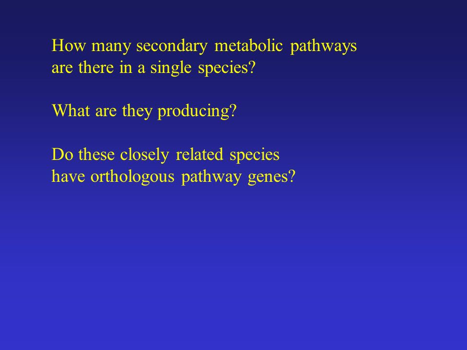 How many secondary metabolic pathways are there in a single species? What are they producing? Do these closely related species have orthologous pathwa