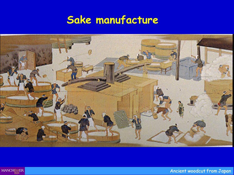 Sake manufacture Ancient woodcut from Japan