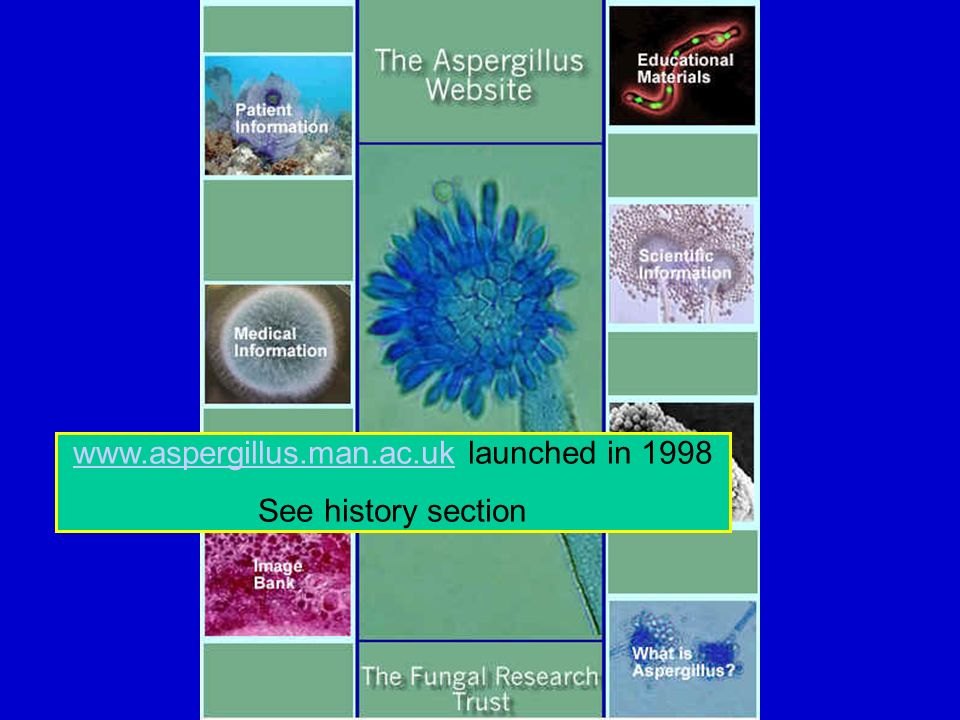 www.aspergillus.man.ac.ukwww.aspergillus.man.ac.uk launched in 1998 See history section