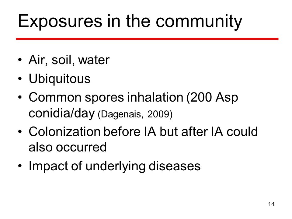 Exposures in the community Air, soil, water Ubiquitous Common spores inhalation (200 Asp conidia/day (Dagenais, 2009) Colonization before IA but after IA could also occurred Impact of underlying diseases 14