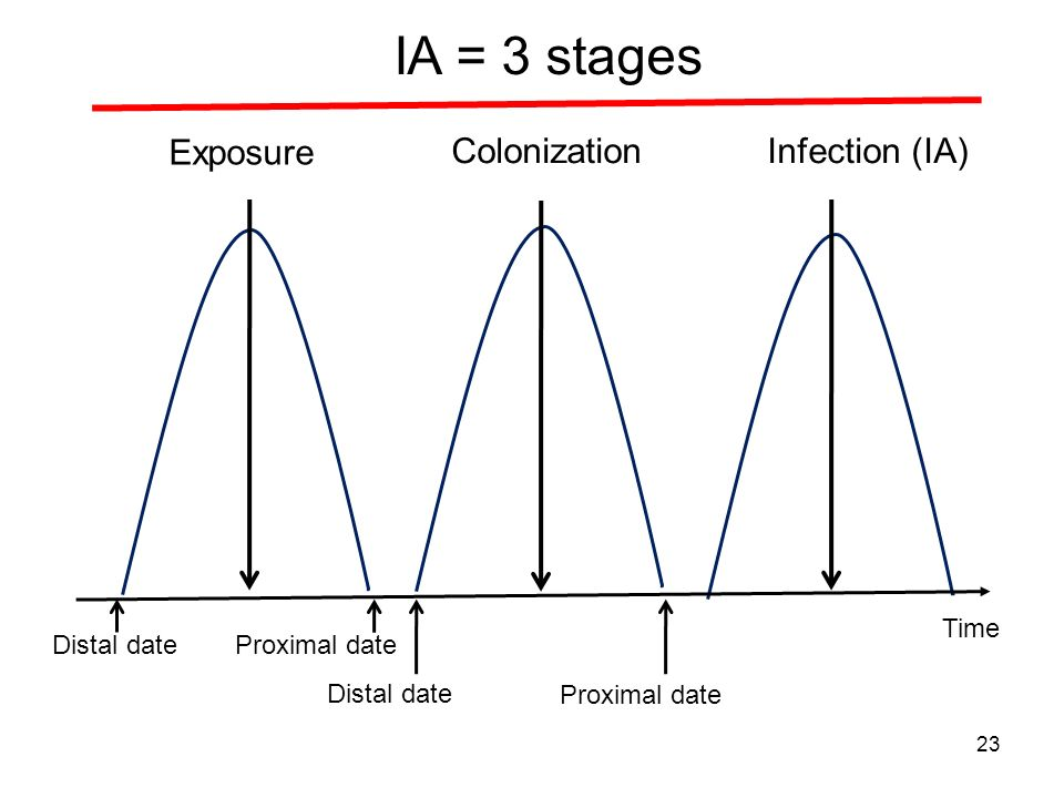 Exposure ColonizationInfection (IA) Distal date IA = 3 stages Proximal date Distal date Proximal date 23 Time