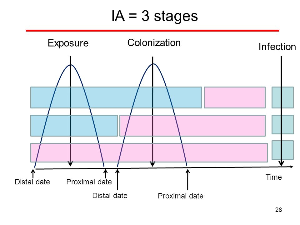 Exposure Colonization Infection Distal date IA = 3 stages Proximal date Distal date Proximal date 28 Time