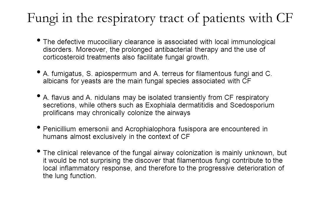 Fungi in the respiratory tract of patients with CF The defective mucociliary clearance is associated with local immunological disorders. Moreover, the