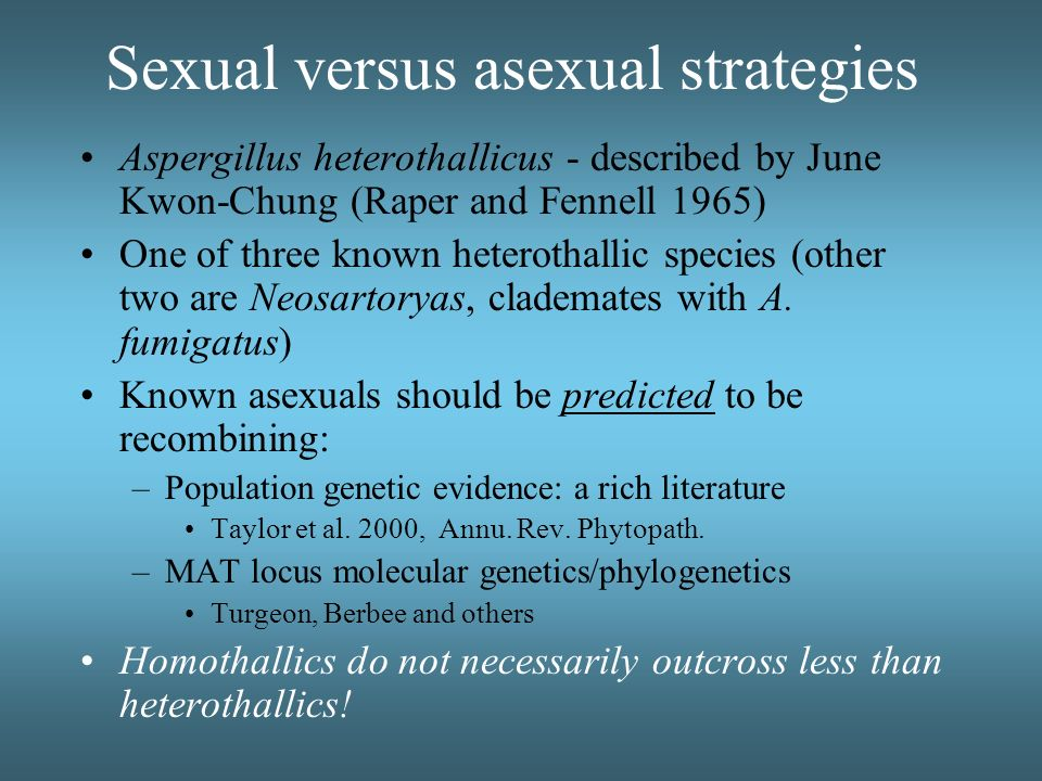 Sexual versus asexual strategies Aspergillus heterothallicus - described by June Kwon-Chung (Raper and Fennell 1965) One of three known heterothallic
