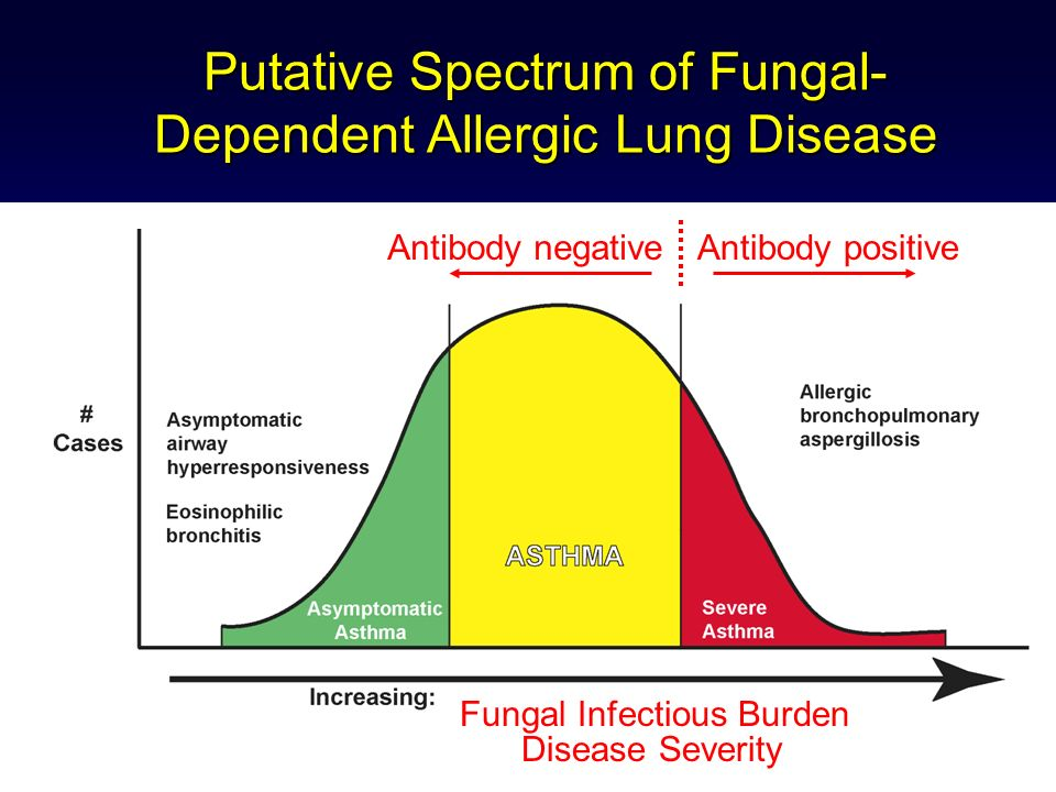 Putative Spectrum of Fungal- Dependent Allergic Lung Disease Antibody positiveAntibody negative Fungal Infectious Burden Disease Severity