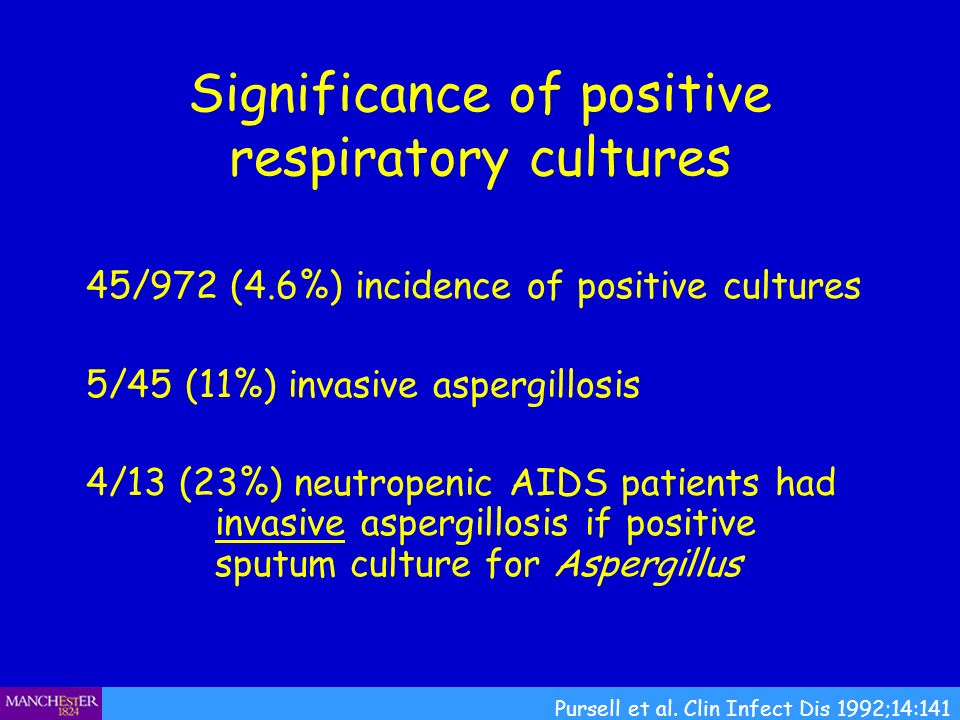 Significance of positive respiratory cultures 45/972 (4.6%) incidence of positive cultures 5/45 (11%) invasive aspergillosis 4/13 (23%) neutropenic AI