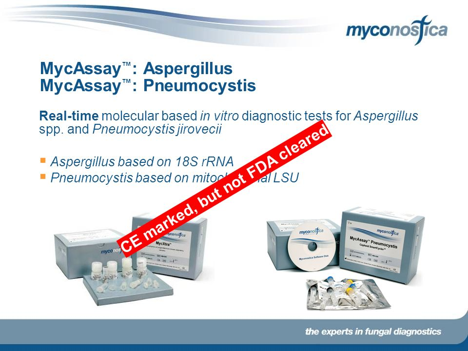 MycAssay : Aspergillus MycAssay : Pneumocystis Real-time molecular based in vitro diagnostic tests for Aspergillus spp. and Pneumocystis jirovecii Asp