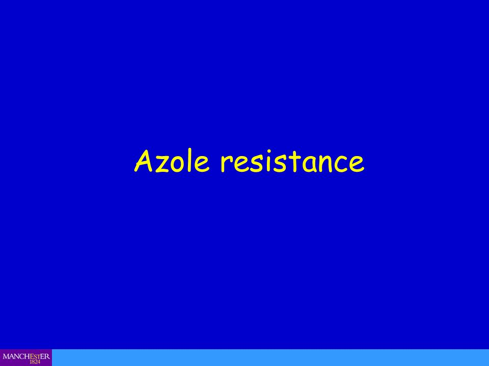 Azole resistance