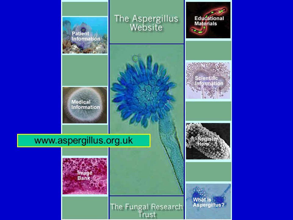 www.aspergillus.org.uk