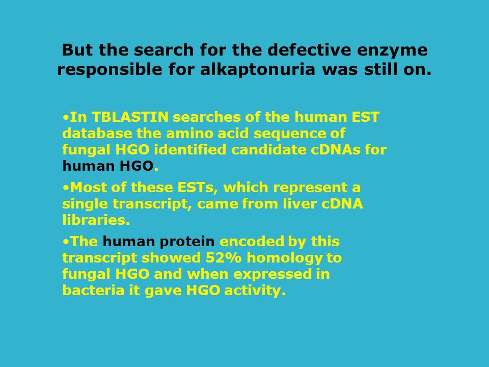 But the search for the defective enzyme responsible for alkaptonuria was still on.