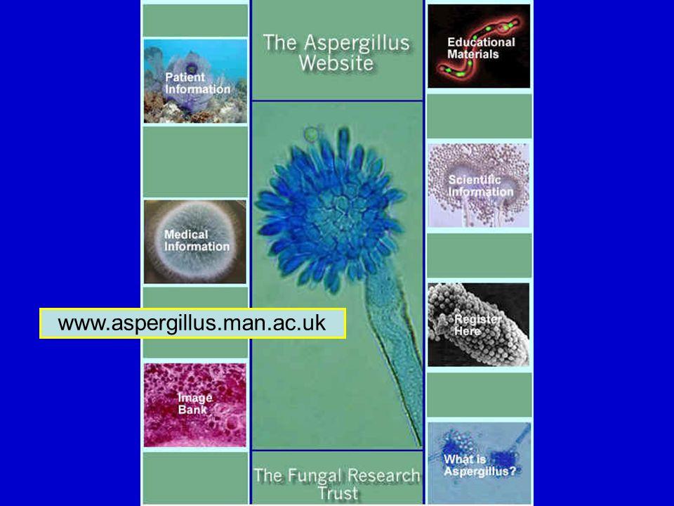 www.aspergillus.man.ac.uk