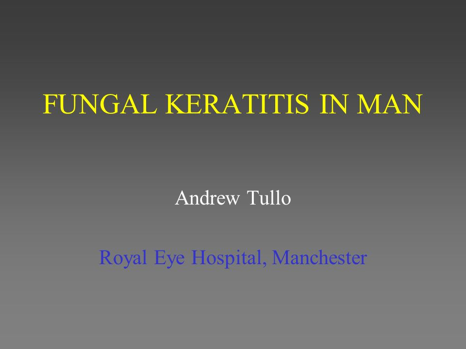 FUNGAL KERATITIS IN MAN Andrew Tullo Royal Eye Hospital, Manchester