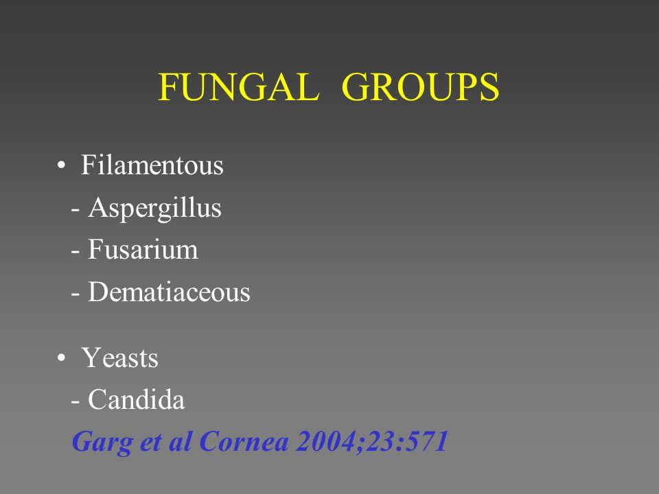 FUNGAL GROUPS Filamentous - Aspergillus - Fusarium - Dematiaceous Yeasts - Candida Garg et al Cornea 2004;23:571