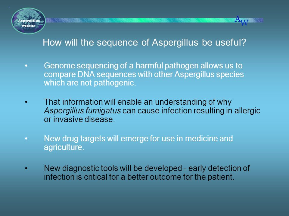 How will the sequence of Aspergillus be useful? Genome sequencing of a harmful pathogen allows us to compare DNA sequences with other Aspergillus spec