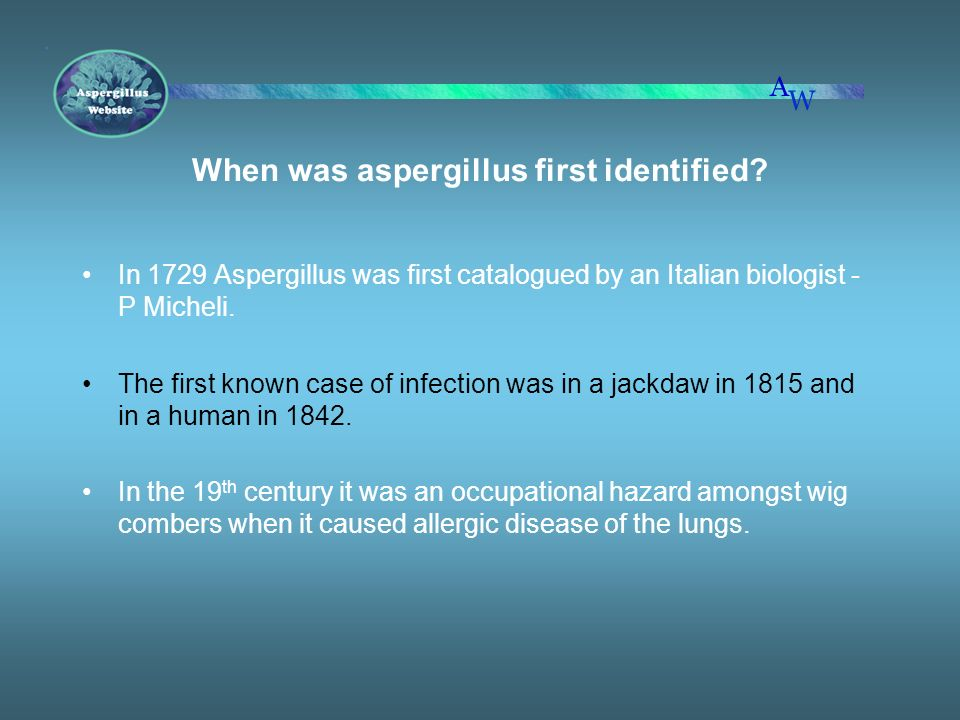 When was aspergillus first identified? In 1729 Aspergillus was first catalogued by an Italian biologist - P Micheli. The first known case of infection