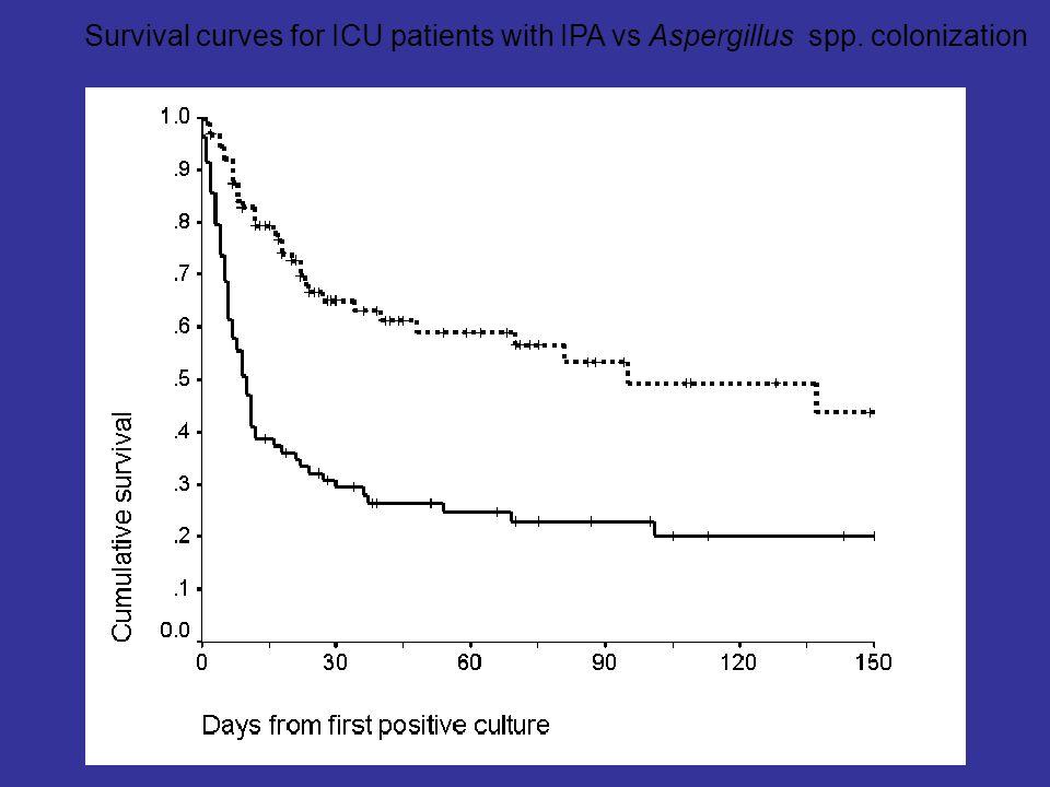 Survival curves for ICU patients with IPA vs Aspergillus spp. colonization