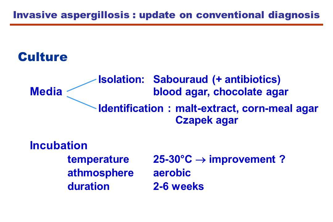 Invasive aspergillosis : update on conventional diagnosis Culture Isolation:Sabouraud (+ antibiotics) Media blood agar, chocolate agar Identification