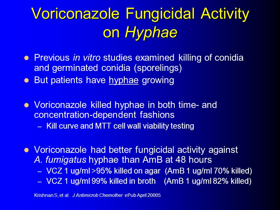 Voriconazole Fungicidal Activity on Hyphae Previous in vitro studies examined killing of conidia and germinated conidia (sporelings) But patients have