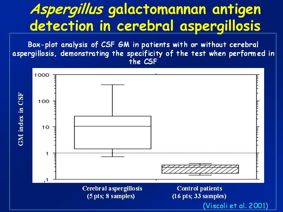 Aspergillus galactomannan antigen detection in cerebral aspergillosis