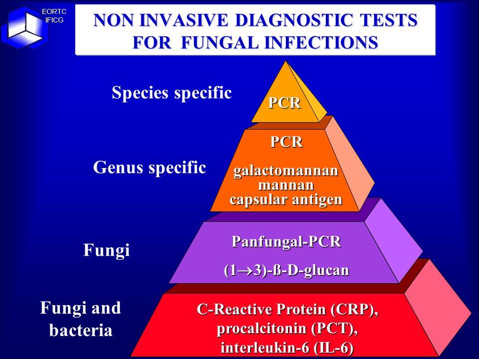NON INVASIVE DIAGNOSTIC TESTS FOR FUNGAL INFECTIONS PCR PCRgalactomannanmannan capsular antigen Panfungal-PCR (1 3)-ß-D-glucan C-Reactive Protein (CRP