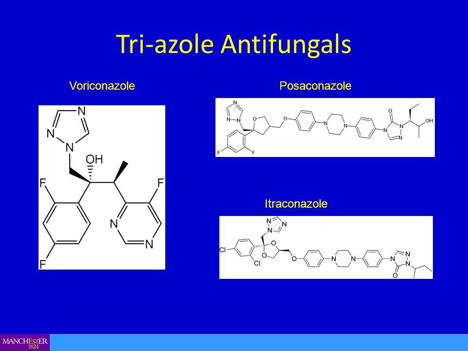 Tri-azole Antifungals VoriconazolePosaconazole Itraconazole