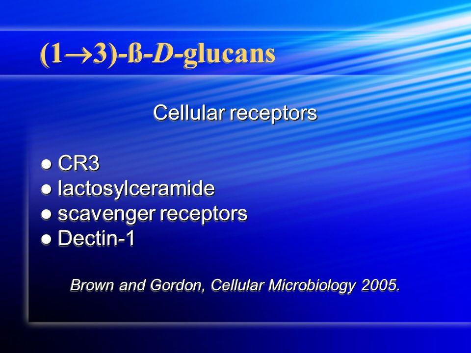 (1 3)-ß-D-glucans Cellular receptors CR3 CR3 lactosylceramide lactosylceramide scavenger receptors scavenger receptors Dectin-1 Dectin-1 Brown and Gor