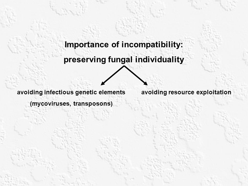 Importance of incompatibility: preserving fungal individuality avoiding infectious genetic elements (mycoviruses, transposons) avoiding resource explo