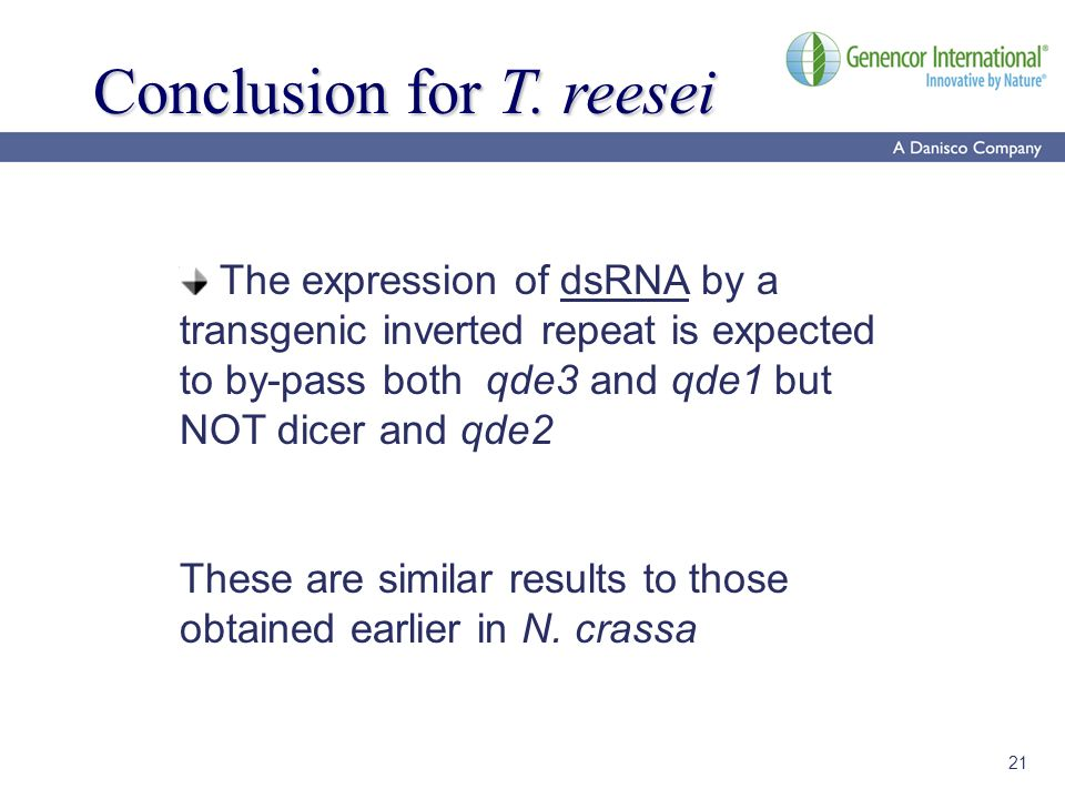 21 Conclusion for T. reesei The expression of dsRNA by a transgenic inverted repeat is expected to by-pass both qde3 and qde1 but NOT dicer and qde2 T