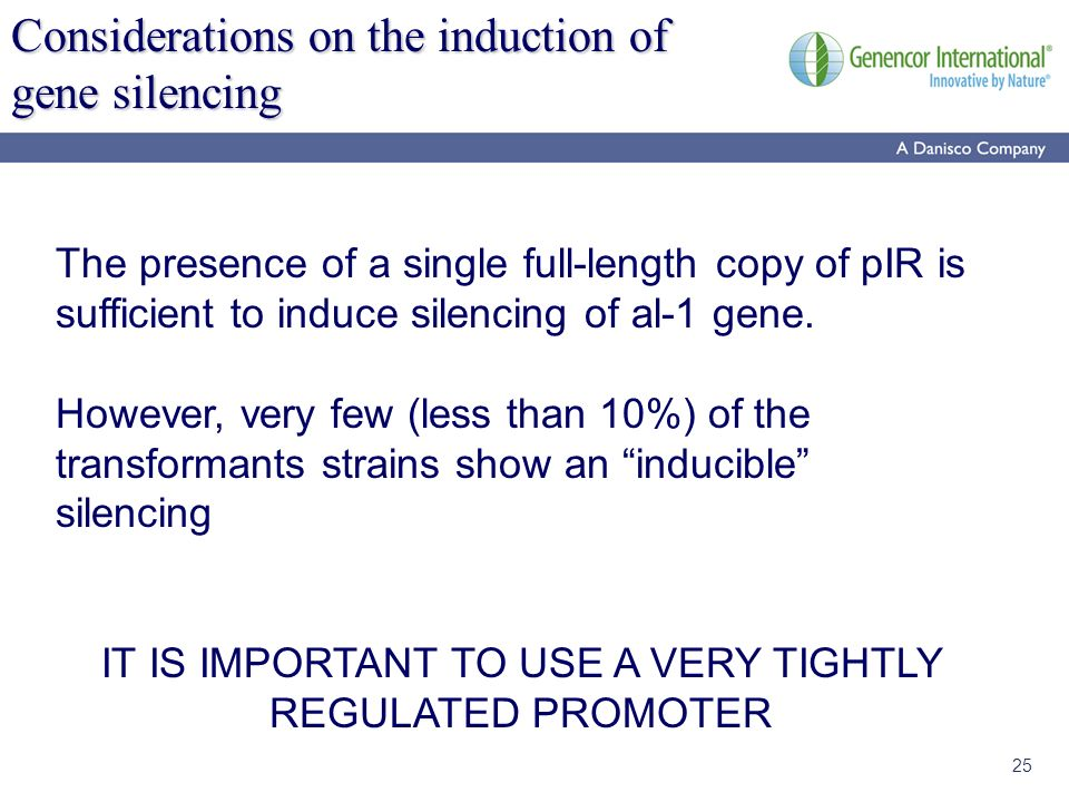 25 Considerations on the induction of gene silencing The presence of a single full-length copy of pIR is sufficient to induce silencing of al-1 gene.