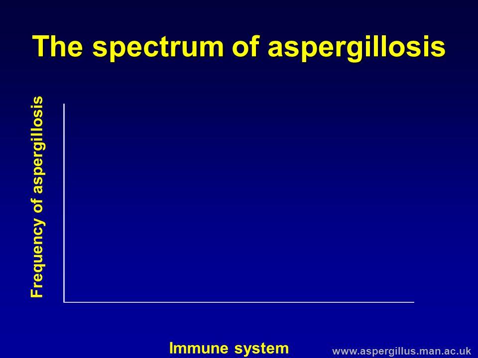 The spectrum of aspergillosis Immune system Frequency of aspergillosis www.aspergillus.man.ac.uk