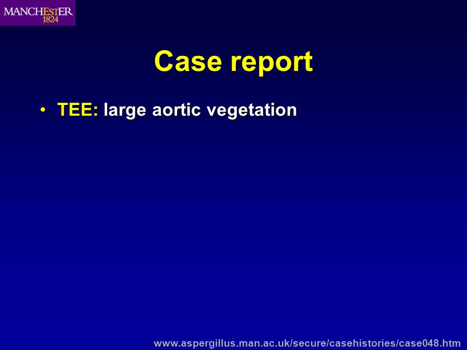 Case report TEE: large aortic vegetationTEE: large aortic vegetation Blood cultures: negativeBlood cultures: negative www.aspergillus.man.ac.uk/secure/casehistories/case048.htm