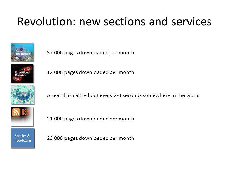 Revolution: new sections and services 21 000 pages downloaded per month 23 000 pages downloaded per month A search is carried out every 2-3 seconds somewhere in the world 37 000 pages downloaded per month 12 000 pages downloaded per month